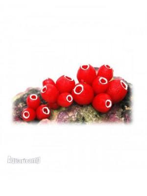 Soma Fish Enfeite de Resina Rocha com Ascidea Vermelha - 040275