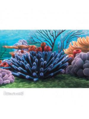 "(NMBG7) Painel decorativo temático Disney / ""Procurando Nemo"" Coral Reef - 50x30"