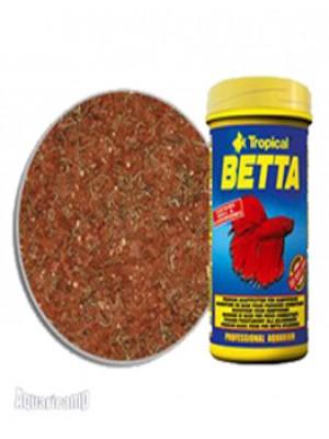 Tropical Betta