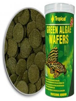 Tropical Green Algae Waffers