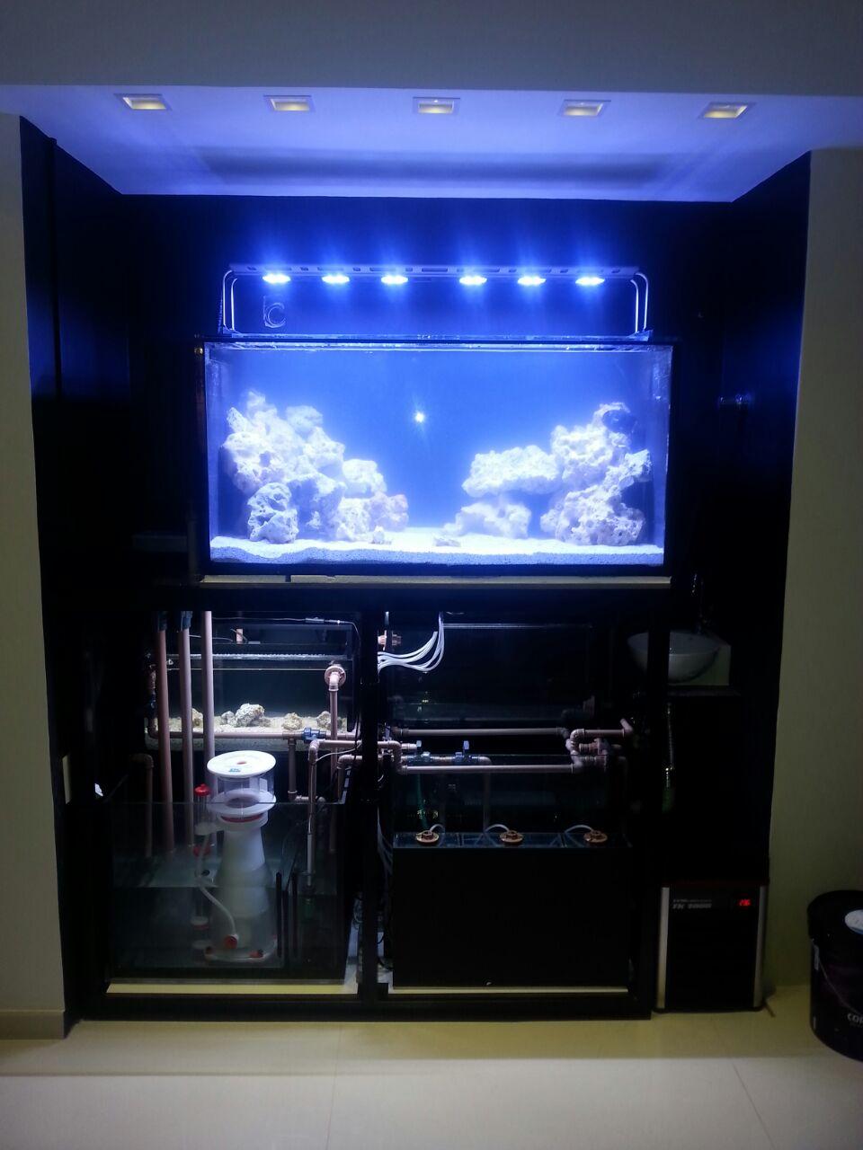 Aquaricamp Tudo Para O Seu Aquario Em Nossa Loja Conhe A